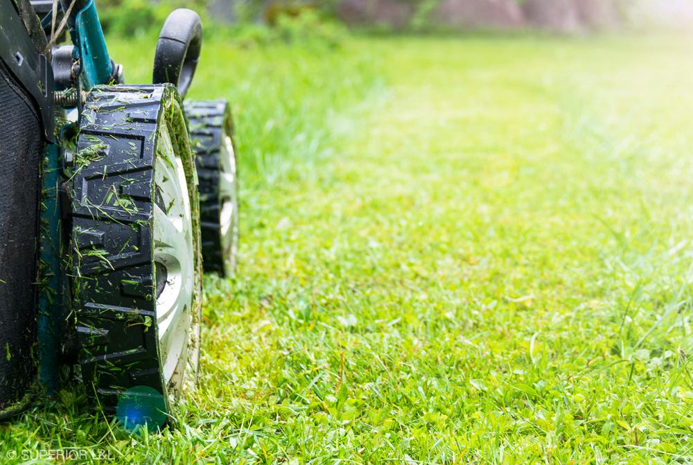 superior-ll-mow-01.jpg