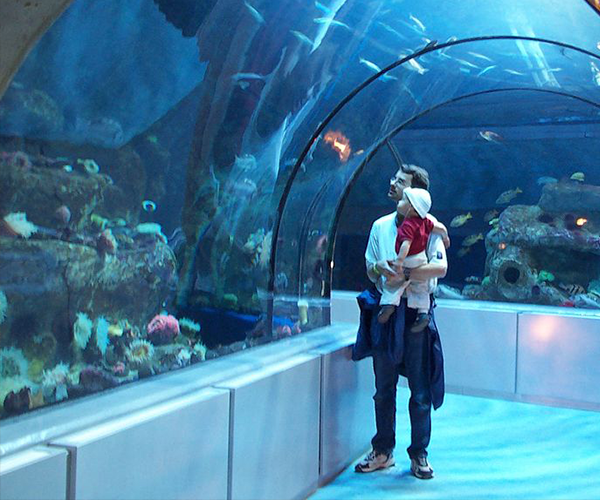 Tourist-Sites-Aquarium-du-Quebec.png