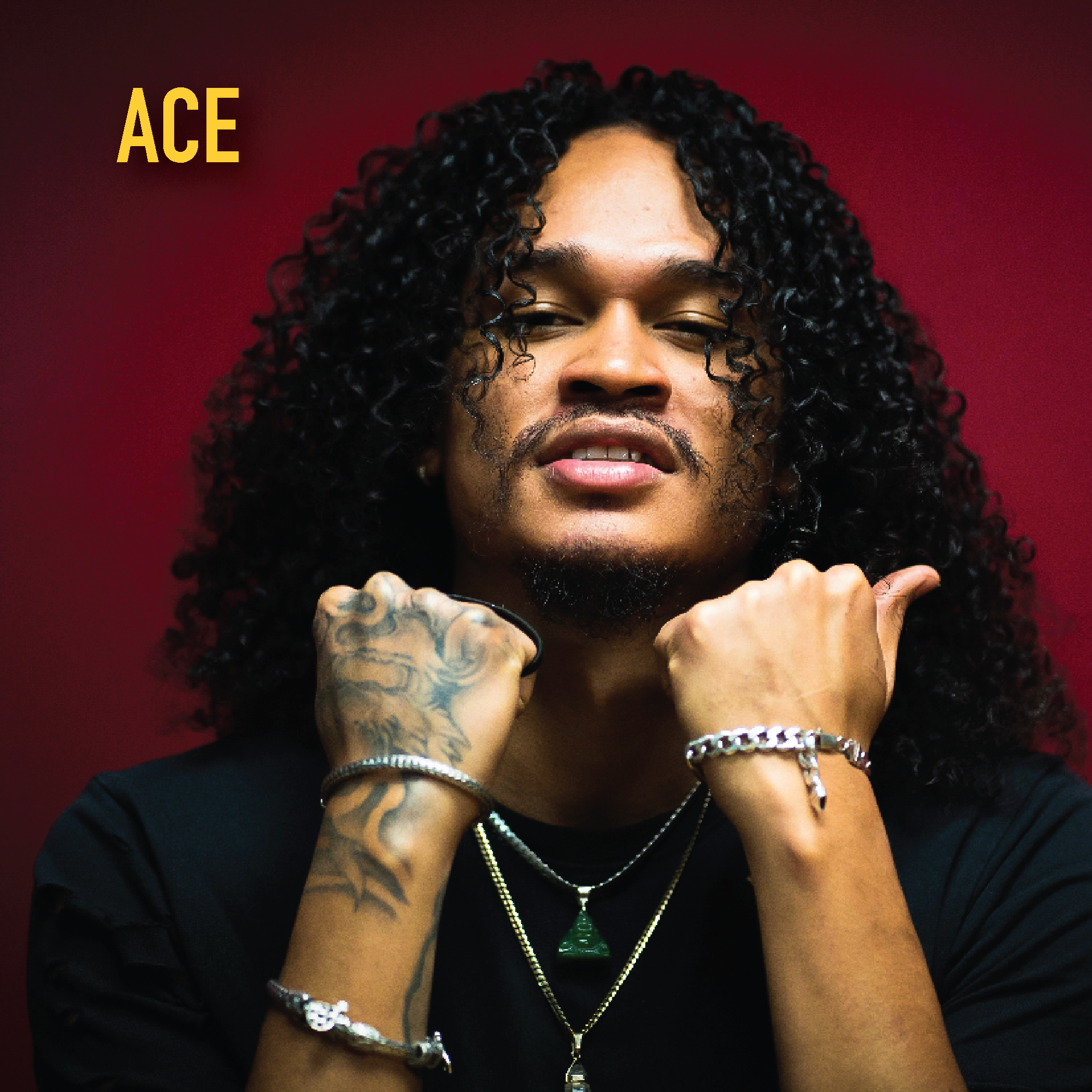ACE_profile-06.png