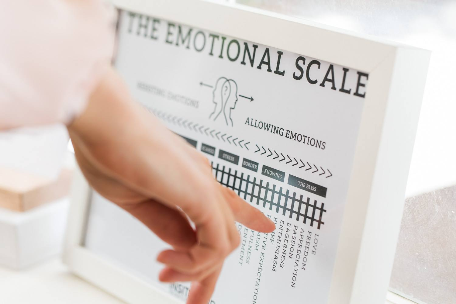 The emotional scale.jpg