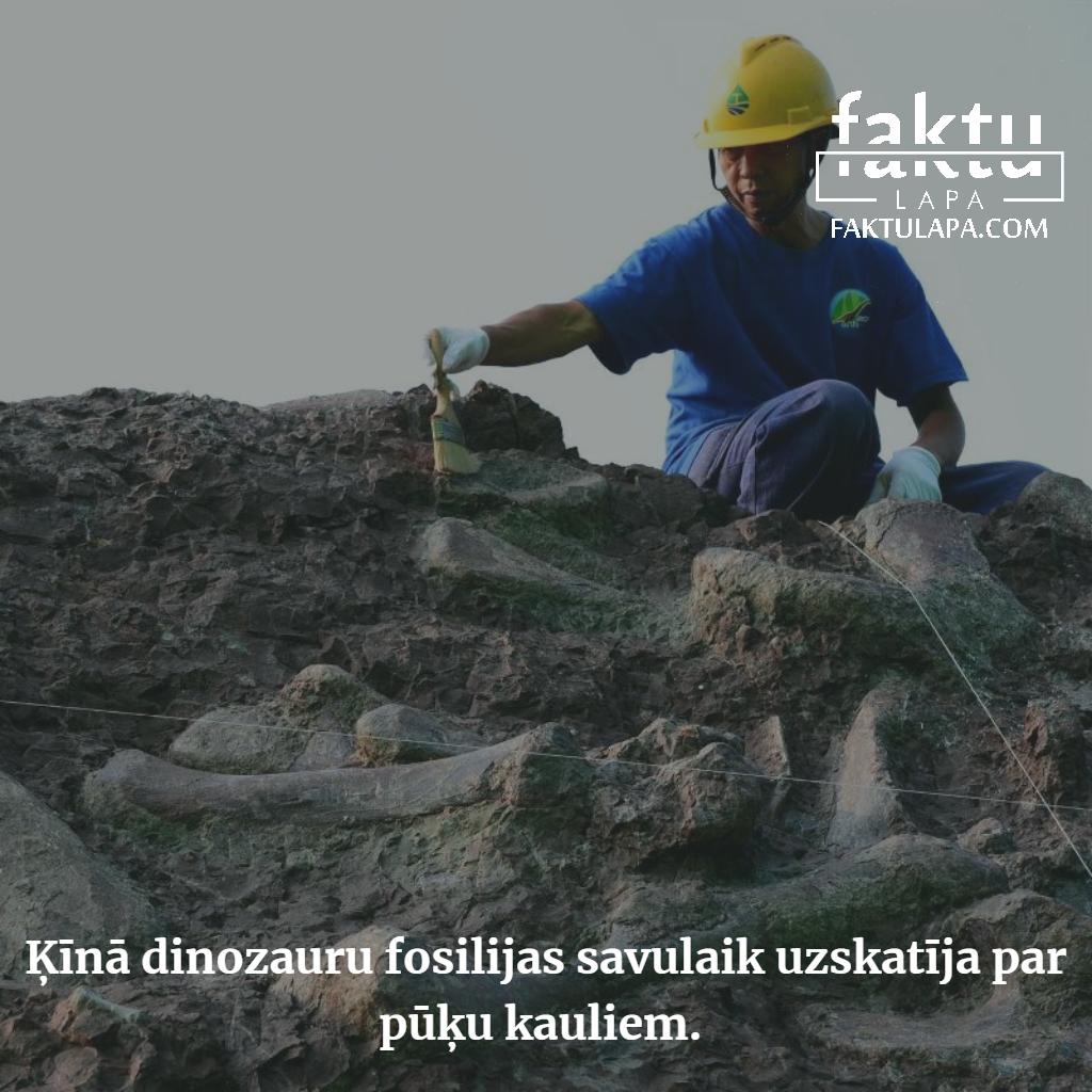 Dinozauru fosilijas pēc ķīniešu domām piederēja pūķiem.png