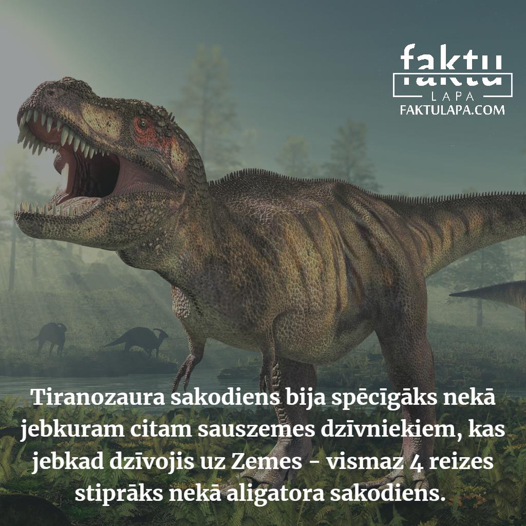 tiranozaura sakodiens.png
