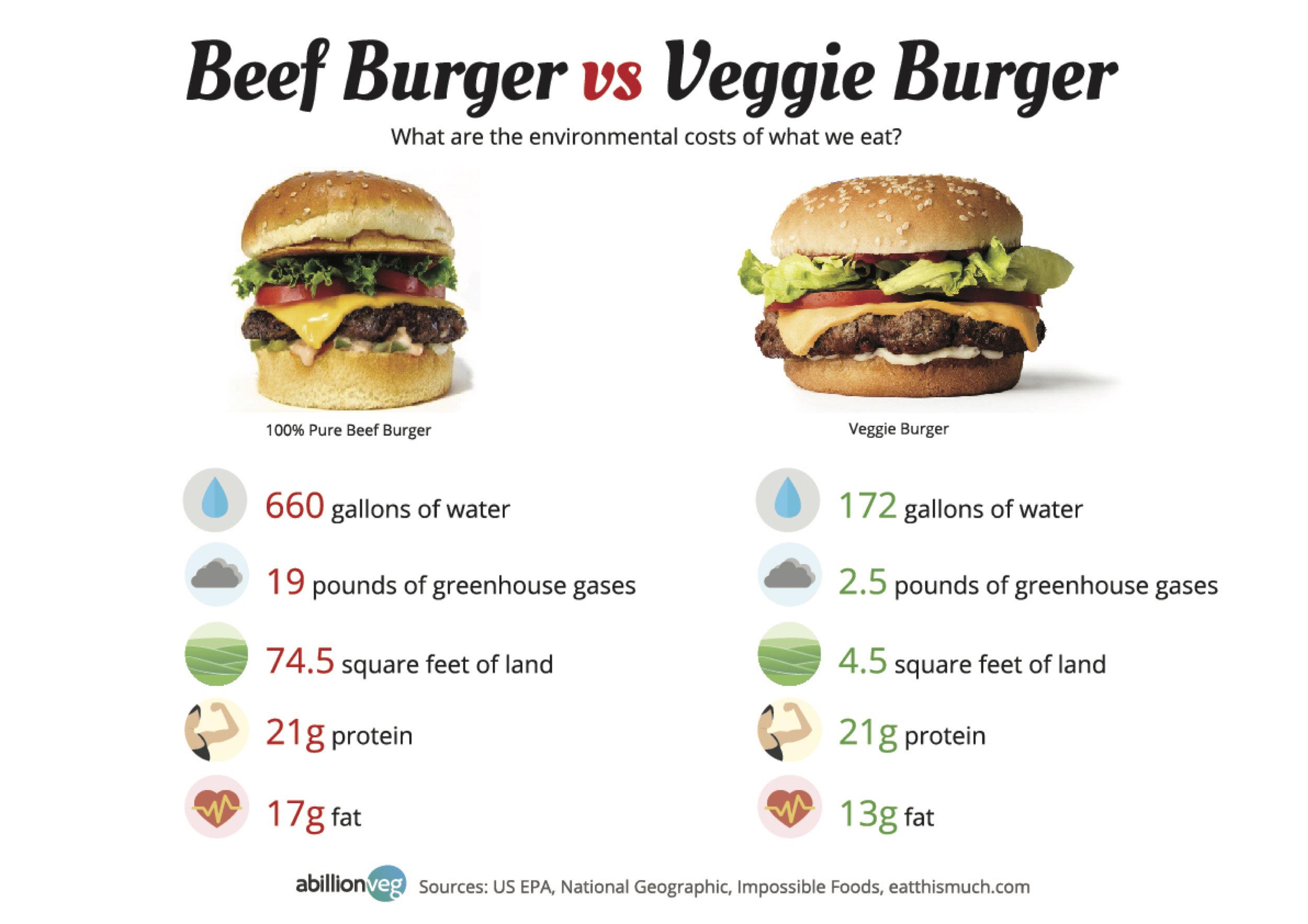 Beef burger vs Veggies burger.jpg