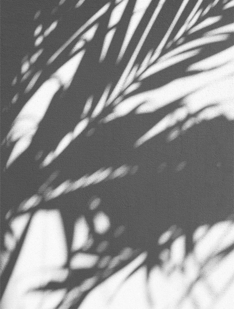 AXIS-Y_Sunscreen6.jpg