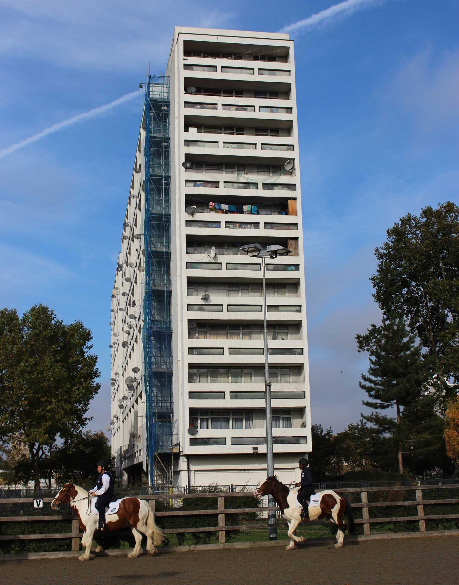 Ebony-Horse-Club-3.jpg