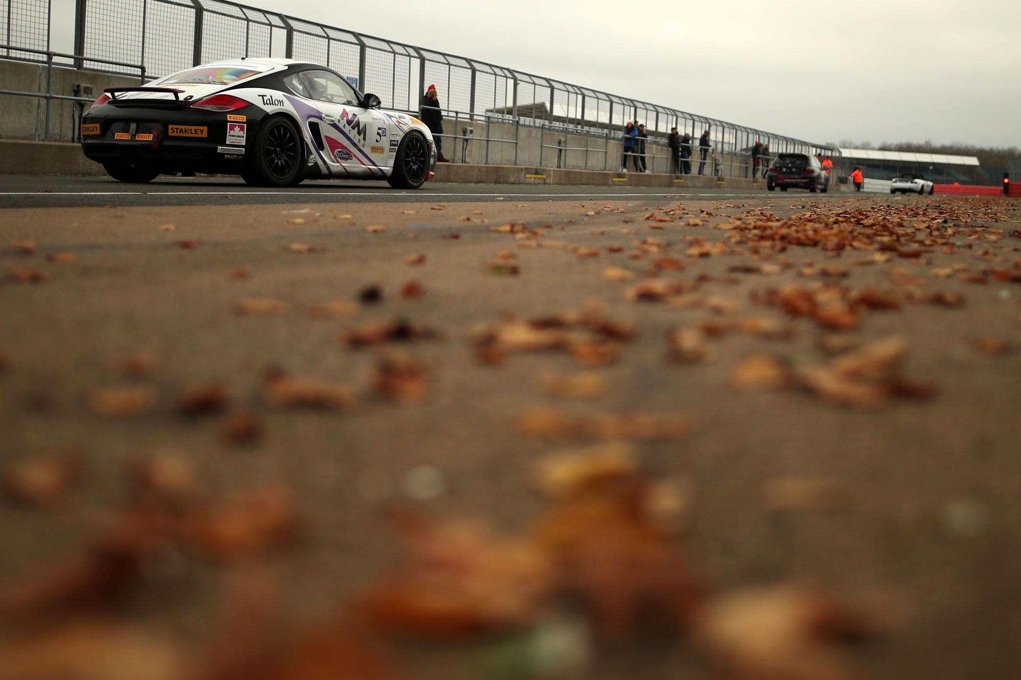 Nathalie_McGloin_Racer_Leaves.jpg