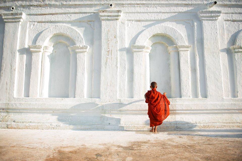 giovane-monaco-birmania.jpg