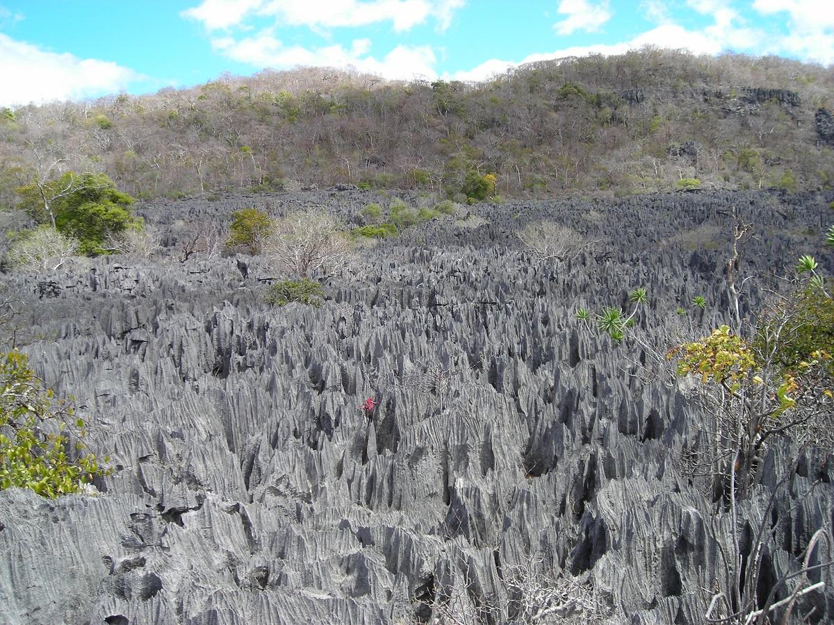 Madagascar 2 (2006) 097.jpg