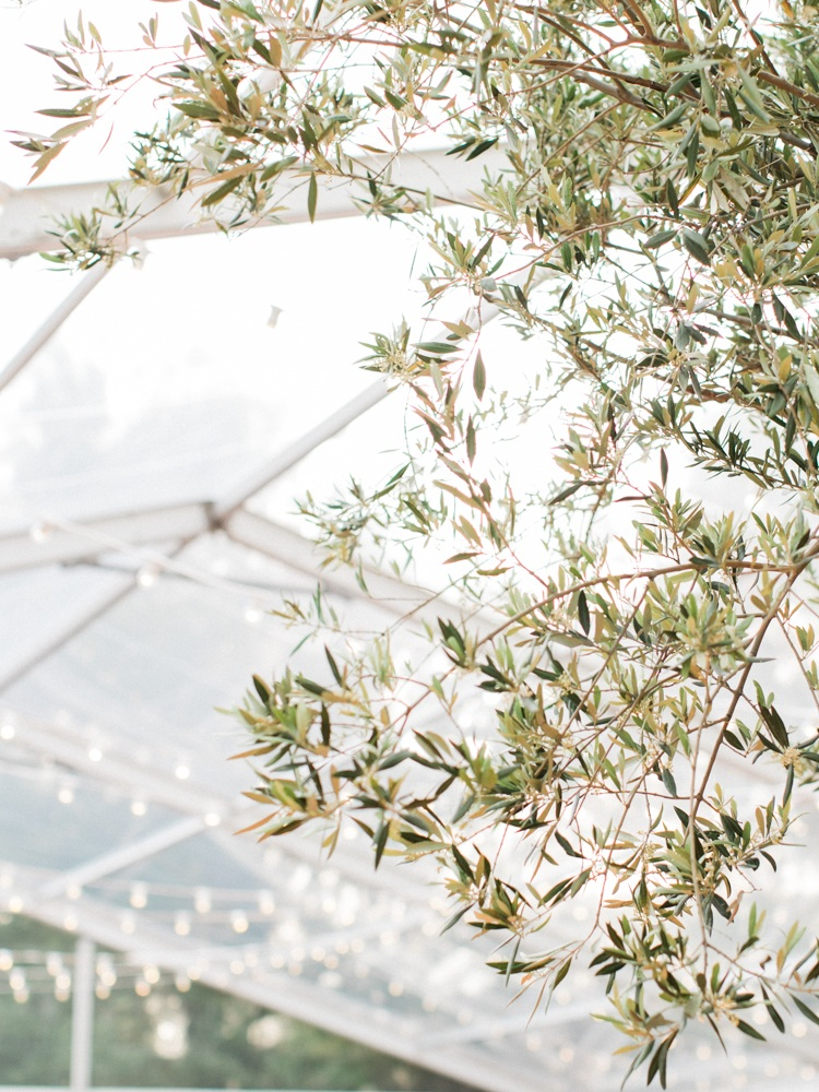 Provence_Wedding_%28c%29_Rory_Wylie-139.jpg