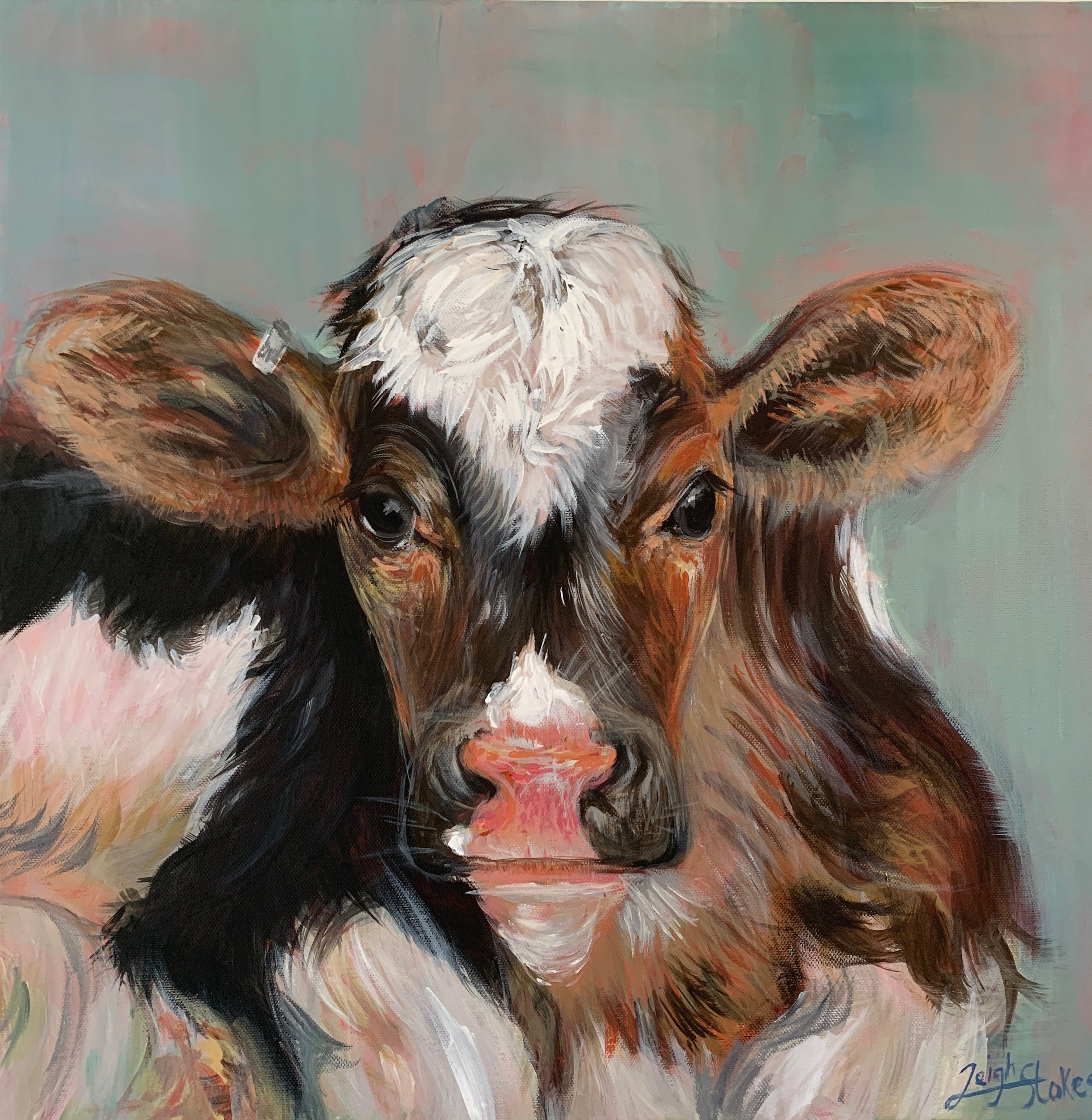 Calf 60 x 60cm on stretched canvas R2500 (sold)