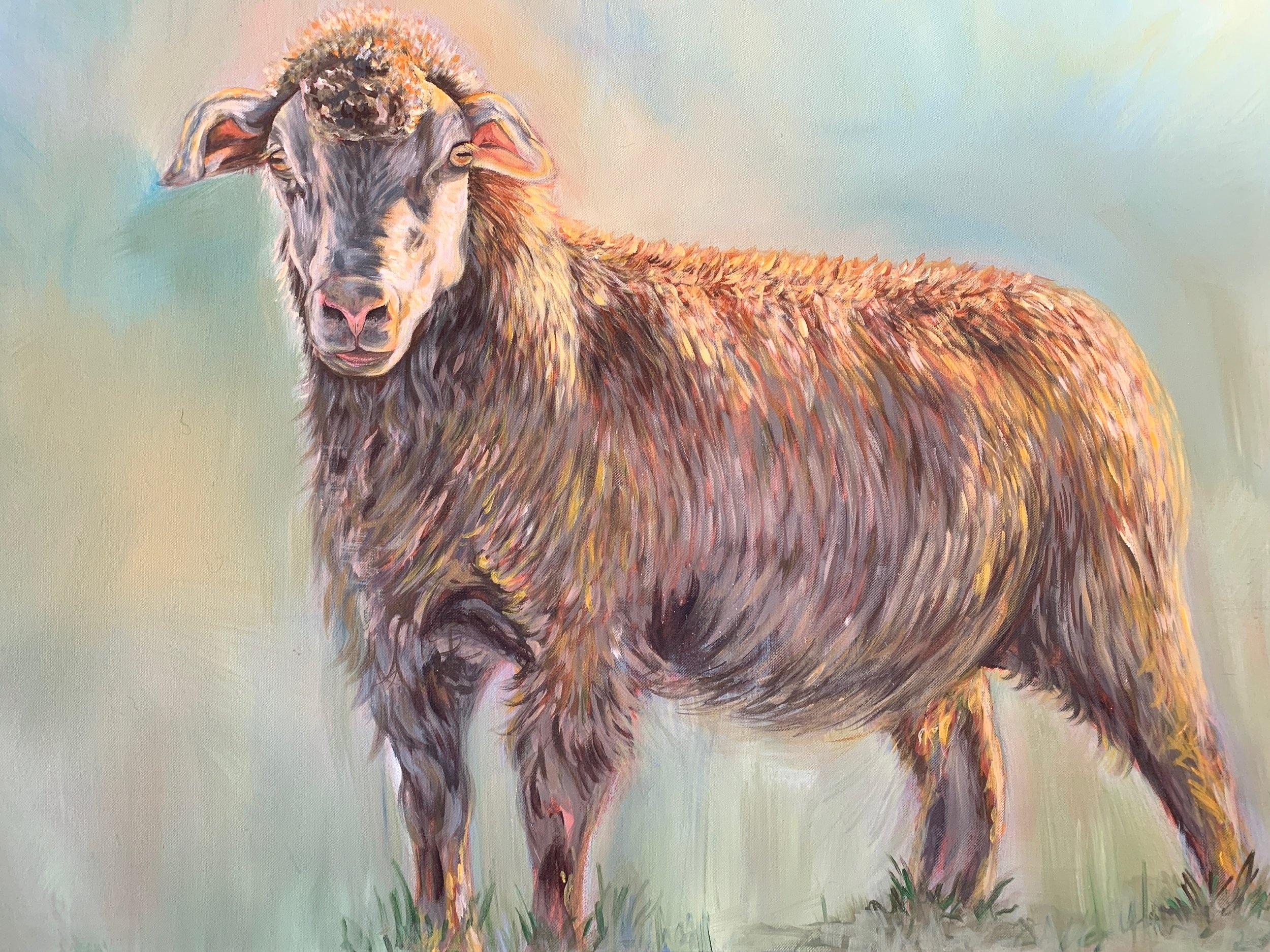 sheep acrylic.JPG