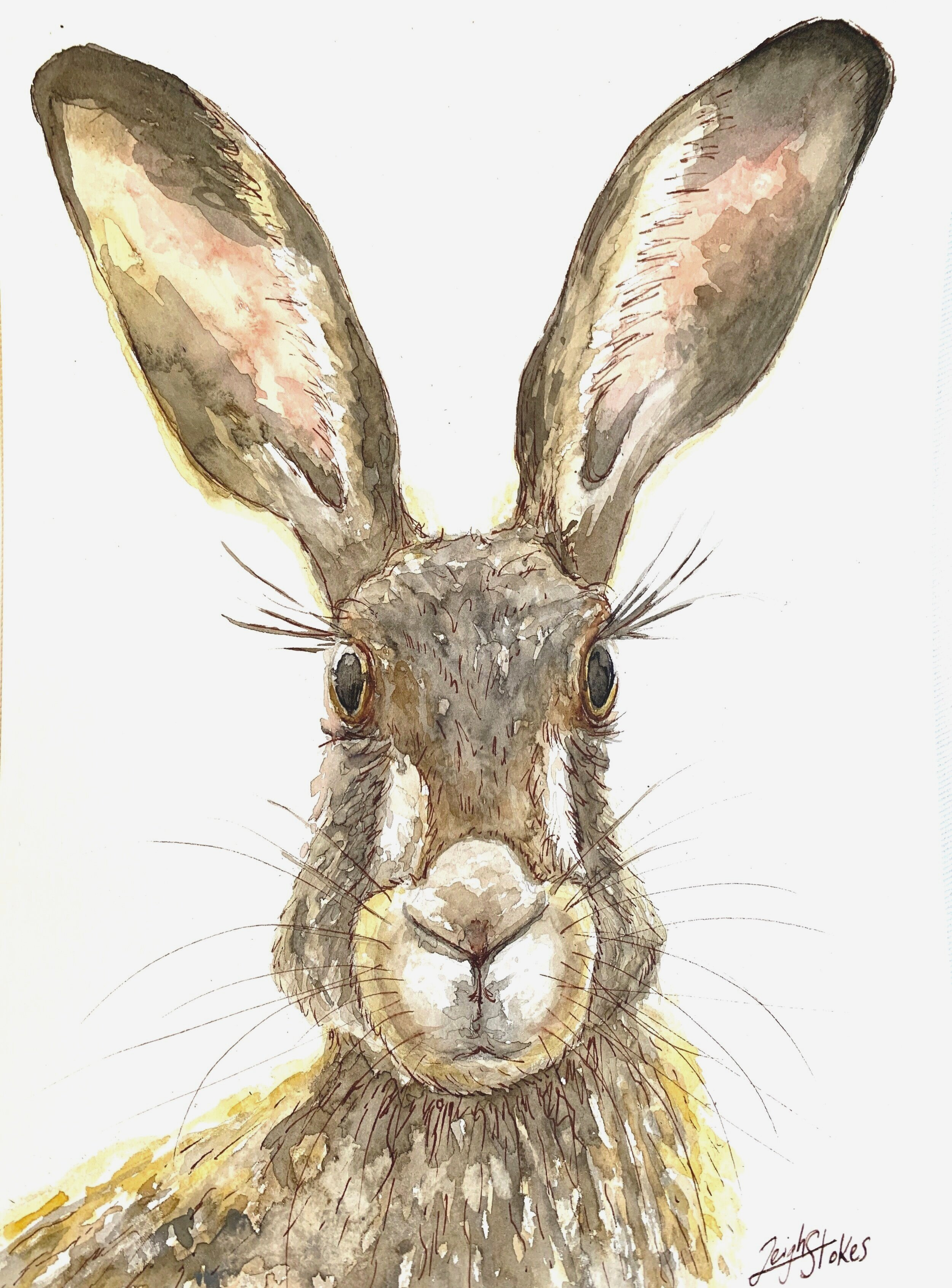 SOLD: A4 hare (prints available to order for R100)