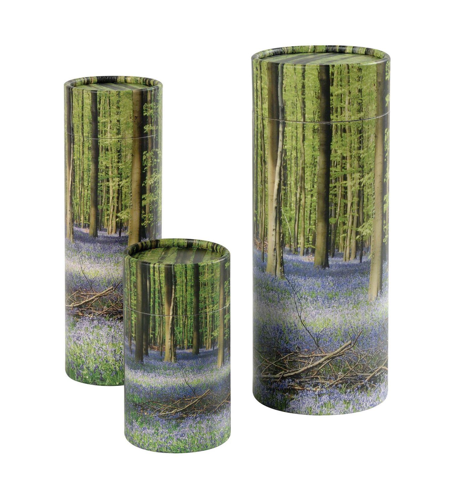 Scatter Tubes Bluebell Wood