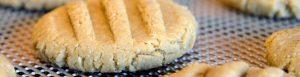 CookieMonster-300x77.jpg