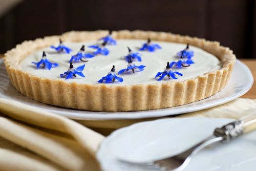 Raw plant-based lemon and borage tart. Photography by my friend Dawn Langley. From a forthcoming online programme about working with Edible Flowers.