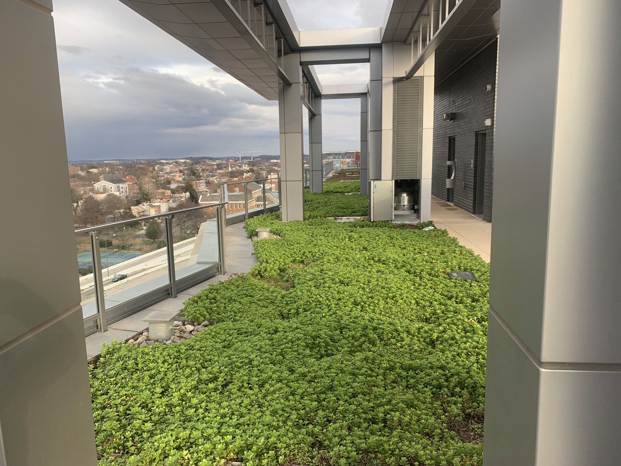 Washington-DC-Green-Roof-3.jpg