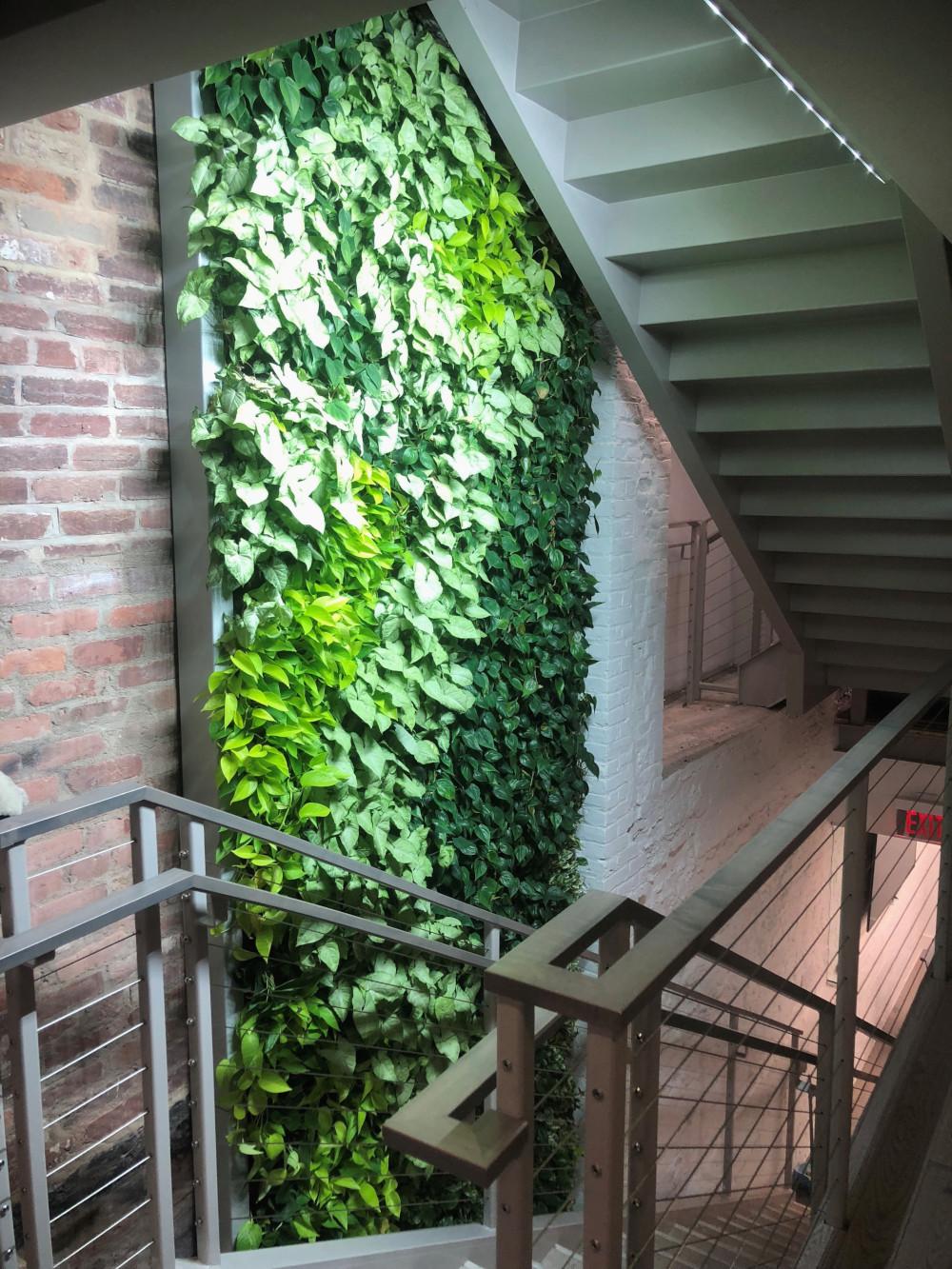 Washington-DC-Indoor-Living-Wall-2.jpg