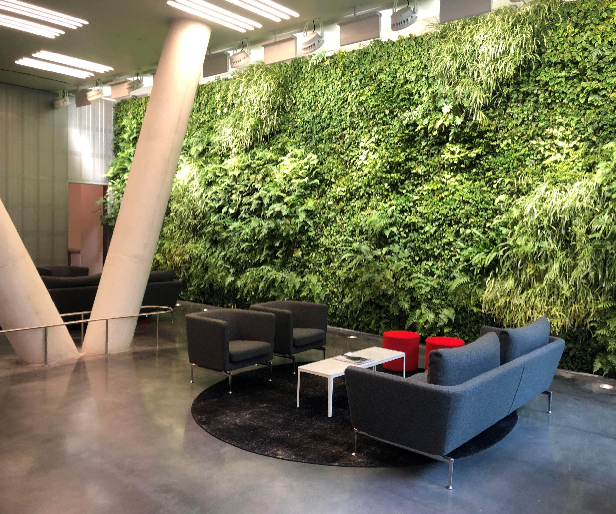 Indoor Living Walls - An indoor living wall creates a green oasis in an office, hospital, or school building. This facade system ensures constant healthy air quality, increases job satisfaction, productivity, and reduces ambient noise.