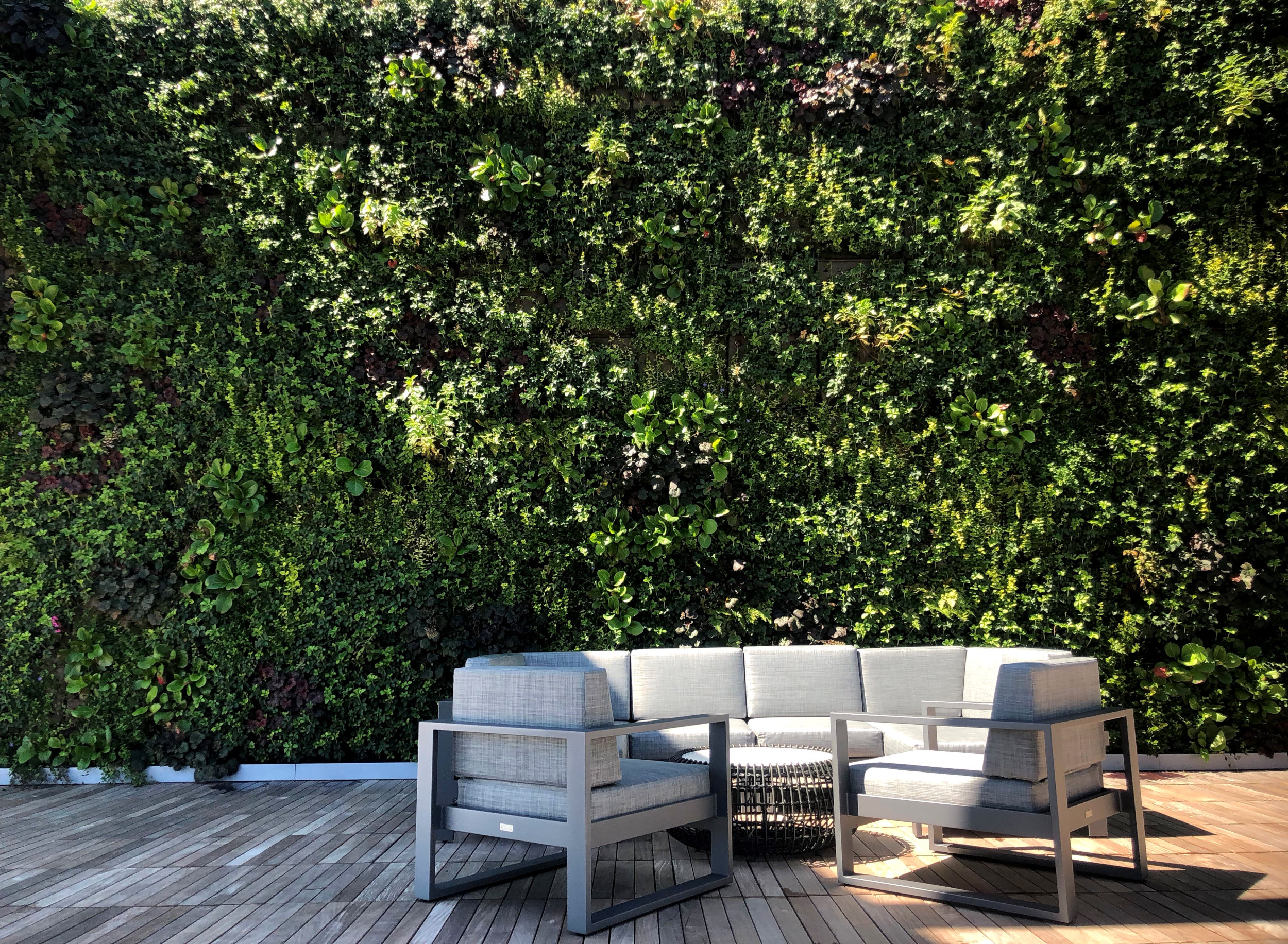 Outdoor Living Walls - An outdoor green wall enables you to create greenery in the urban area, where there is otherwise little space for plants. Thanks to the flexible system and wide variety of plants in the Sempergreen wall, almost every wall is suitable to become a living wall.