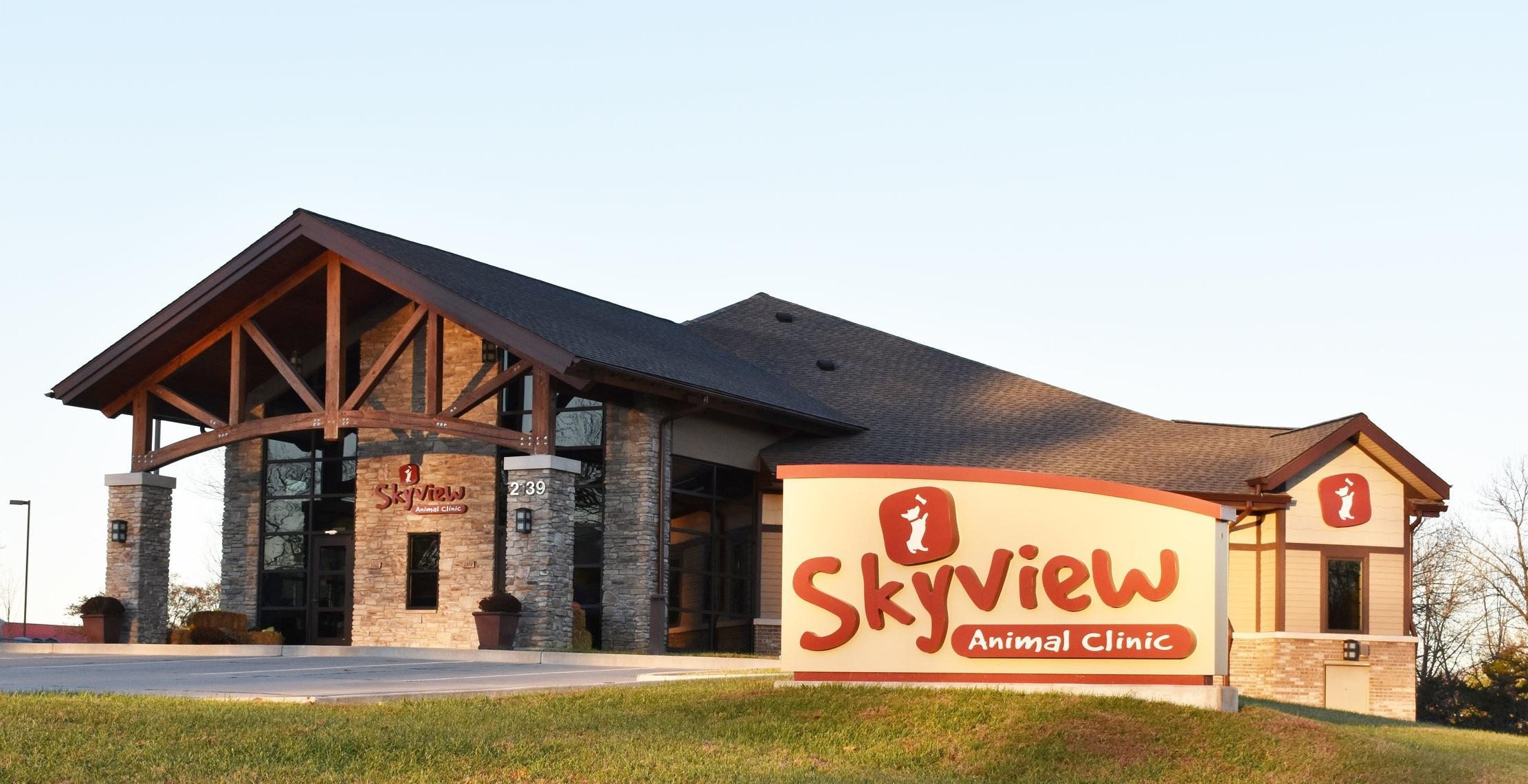 Skyview1.jpg