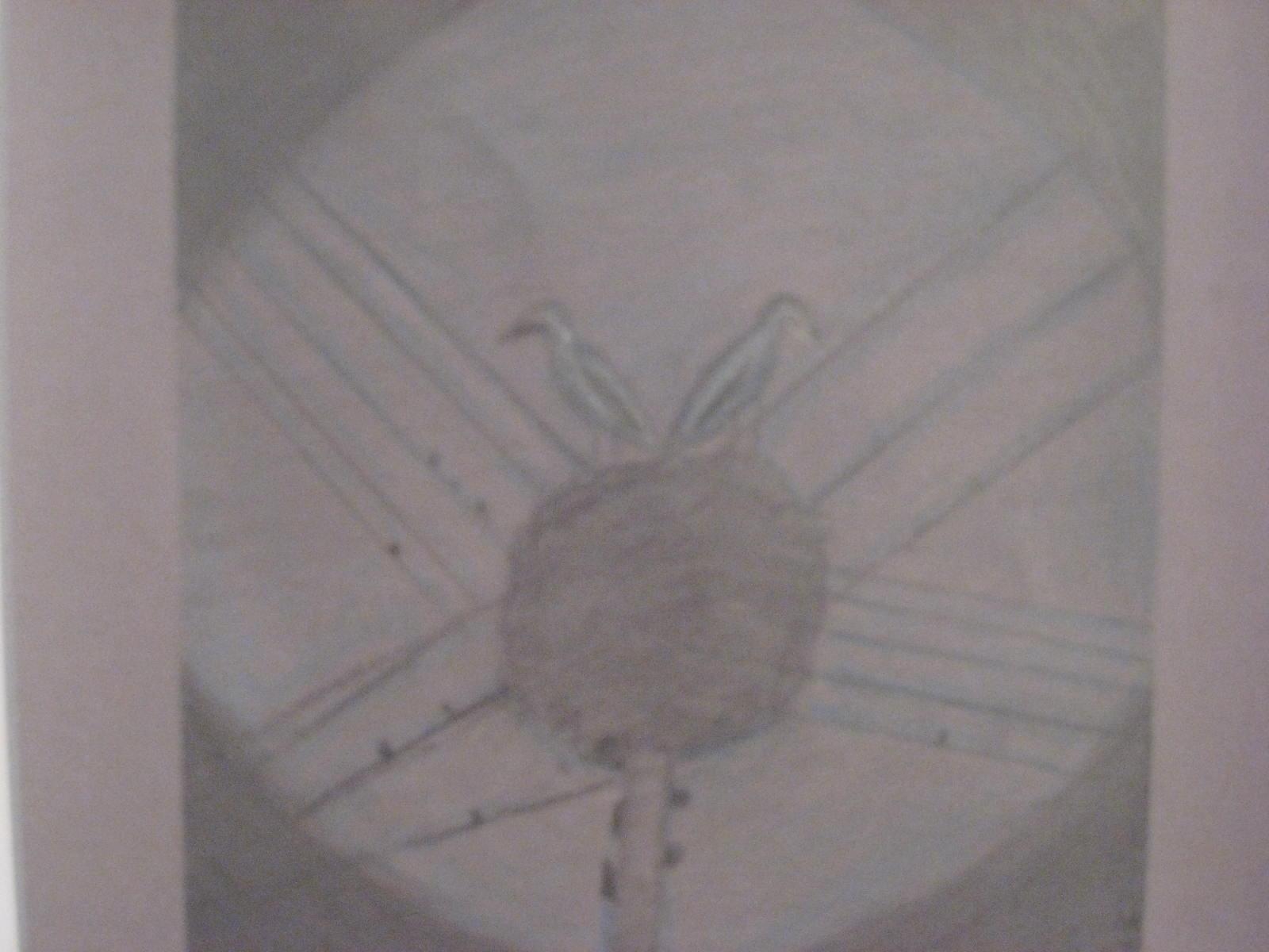 may 11 2012 661.jpg