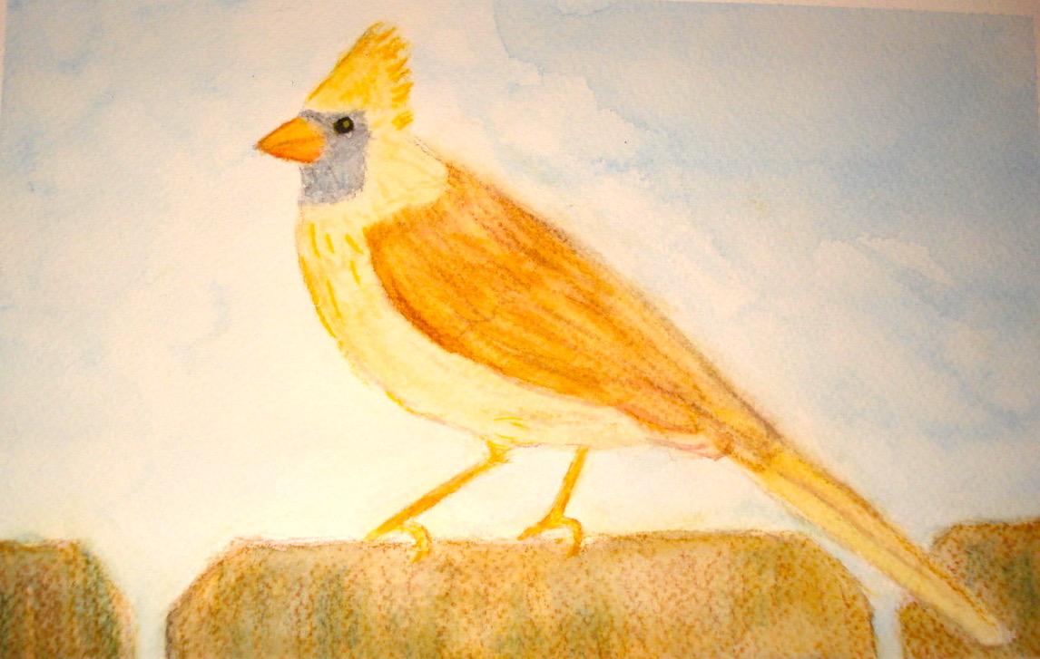 sharon t bird yellow.jpg