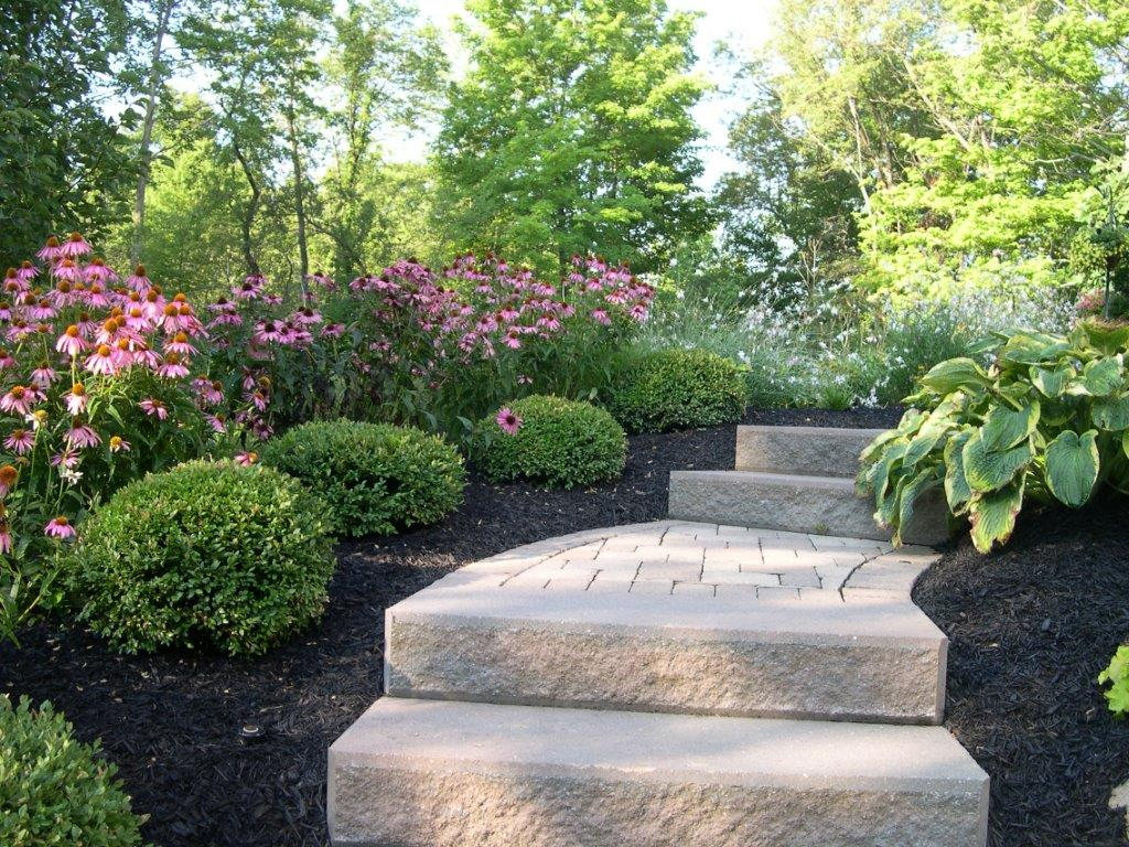 Top landscape maintenance services in Chagrin Falls OH