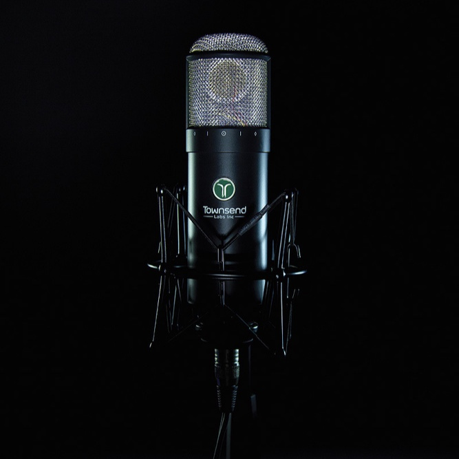 MICS - I've collected the best mic modeling technology in the business which gives you access to some of the world's most coveted microphone collections.