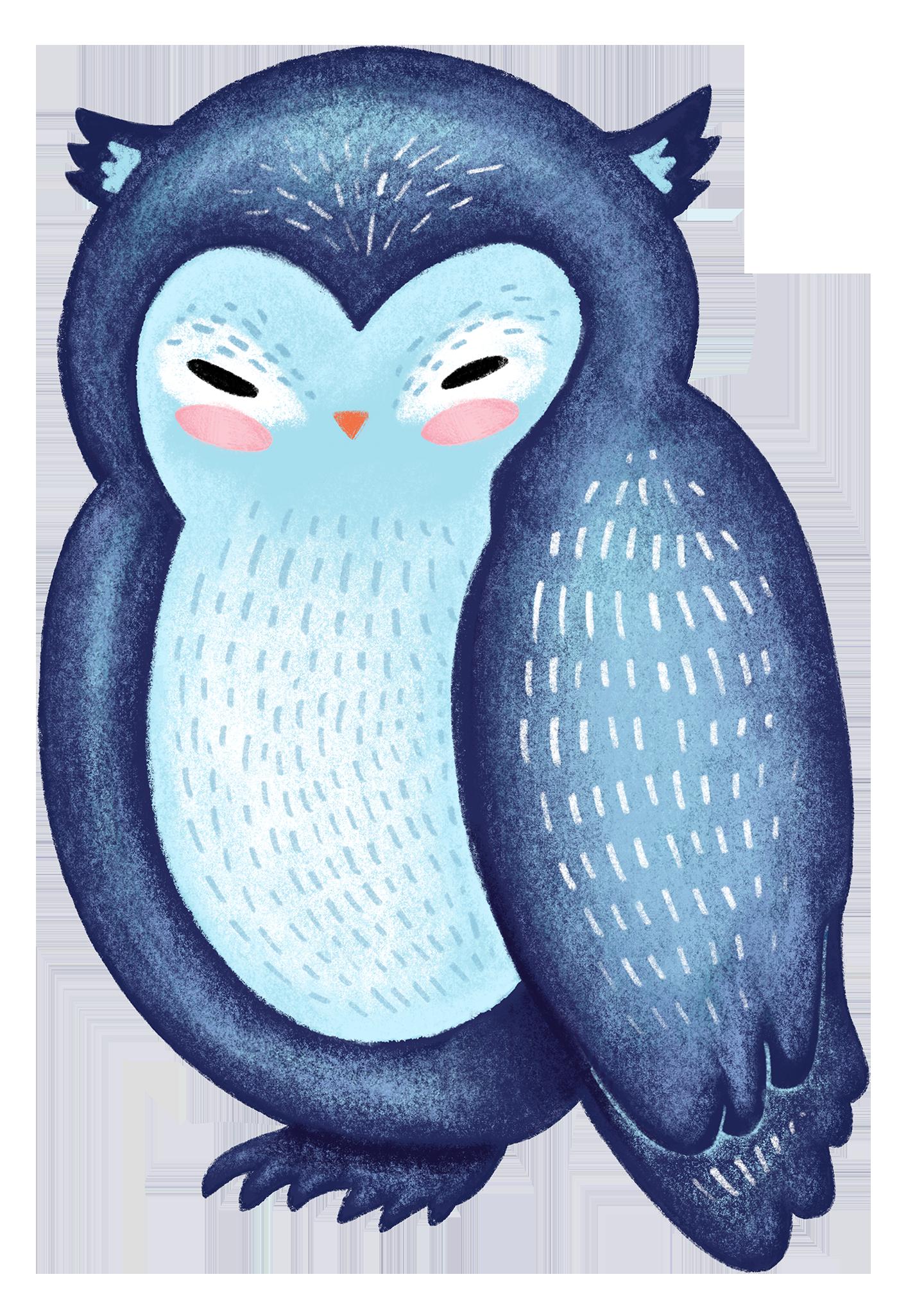 OWL_FINAL.png