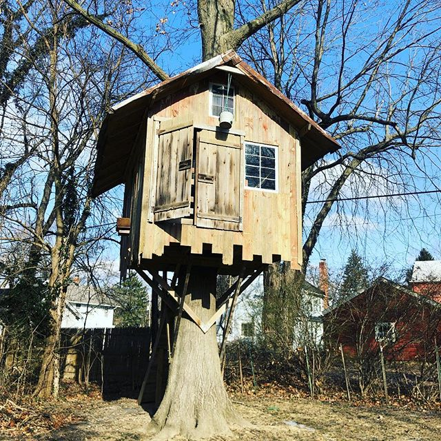 Who wants to buy a tree fort!