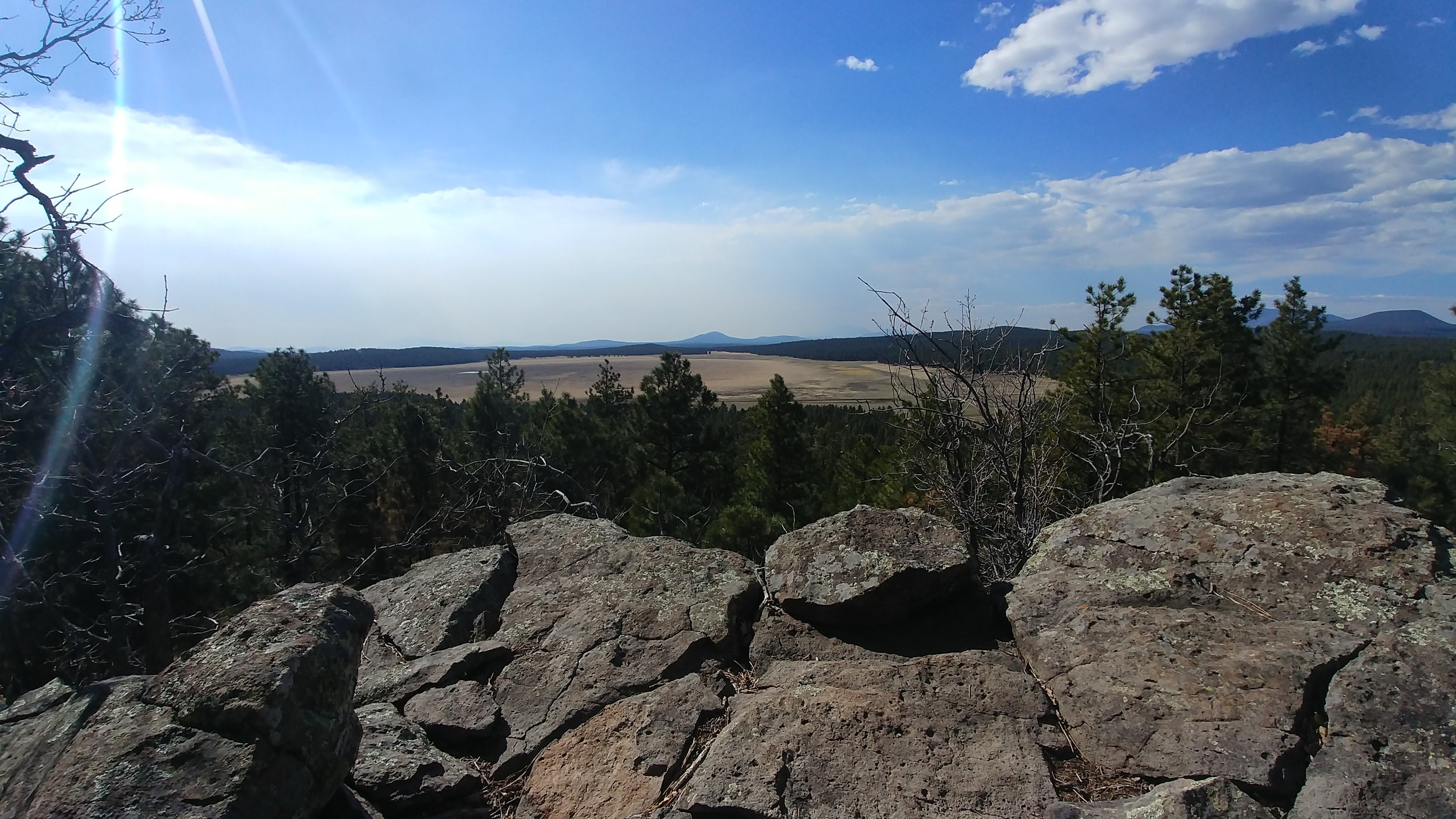 Take in the view from the Gold Digger Trail, at Rogers Lake County Natural Area.