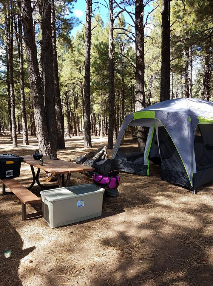 Visitors enjoy tent and car camping at Fort Tuthill County Park Campground.