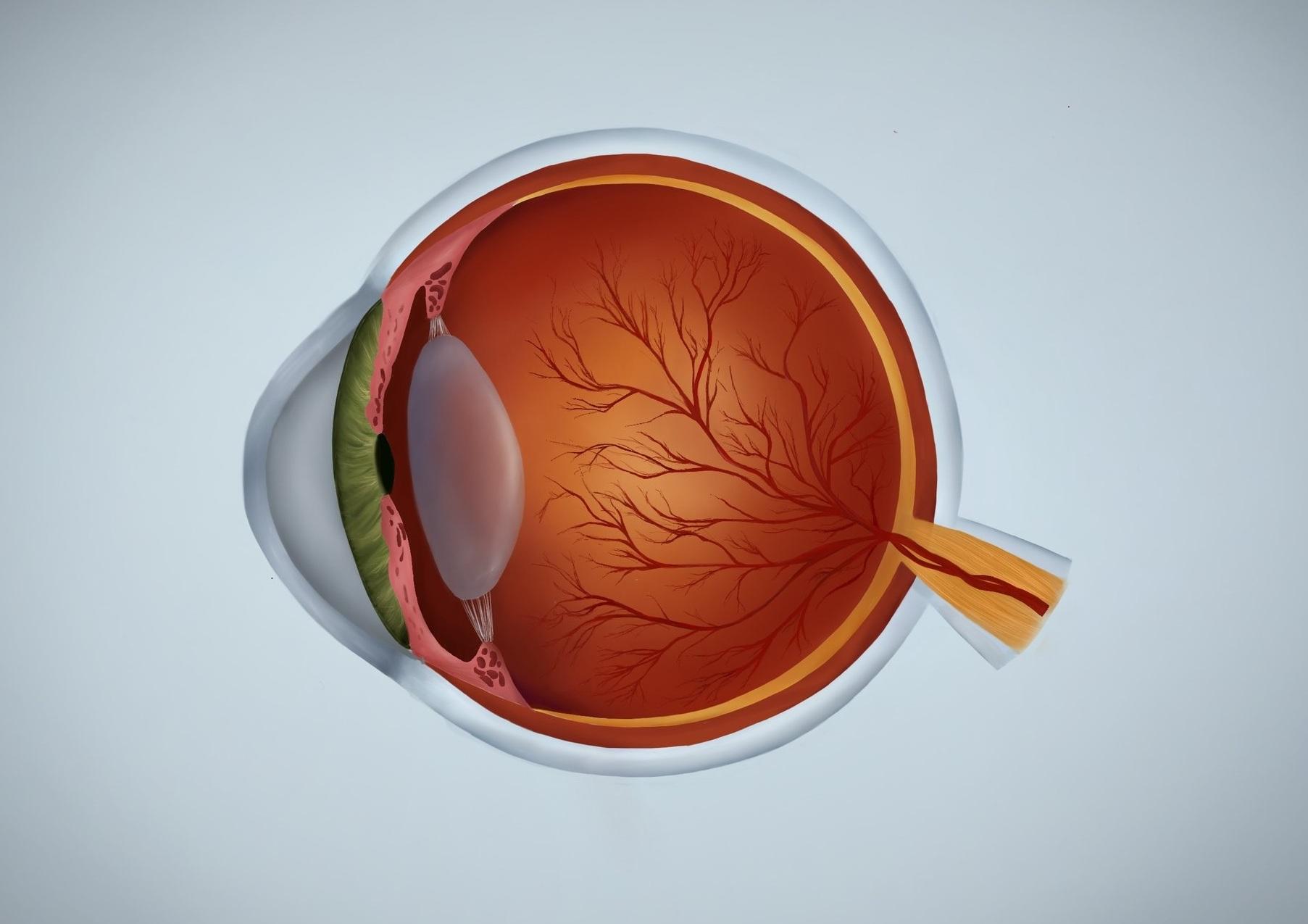 Eye%2Bgrey%2B2.jpg