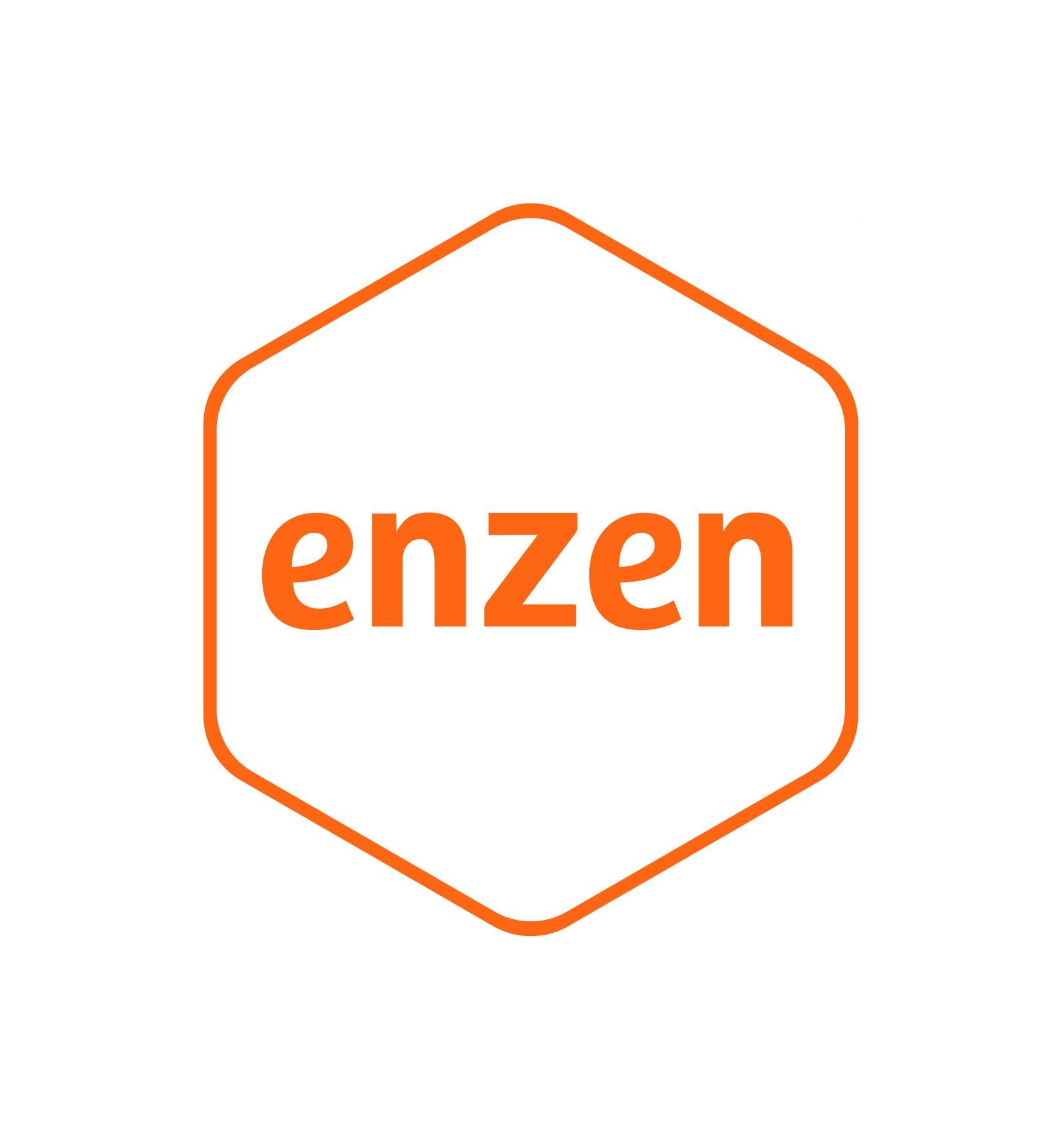 Enzen_Logo_OnScreen_RGB.jpg