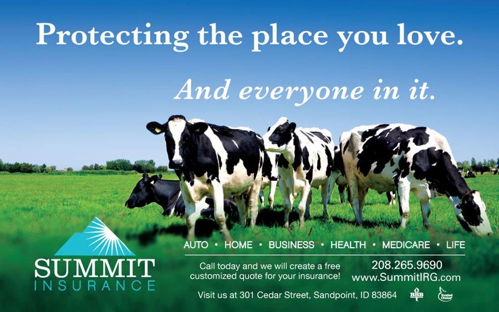 2016-Summit-Fair-Ad.jpg