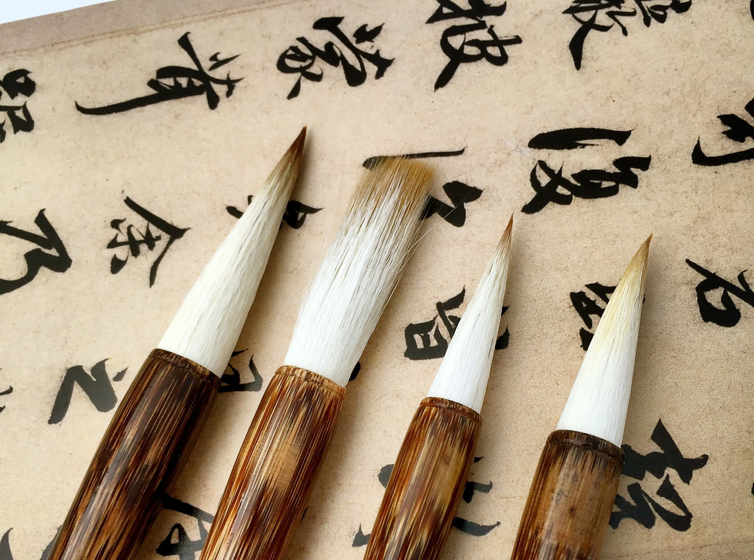 arts-and-crafts-composition-paint-brushes-261564.jpg
