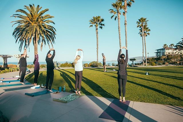 "@visitlaguna is excited to announce the launch of the ""Pathway to Zen,"" a one-of-a-kind wellness trail for artists, adventurers, experience collectors, and mindful travelers seeking rejuvenation of the mind, body and soul. 💆‍♀️💆‍♂️ #mylagunabeach #CalTravel 🔗 in bio."