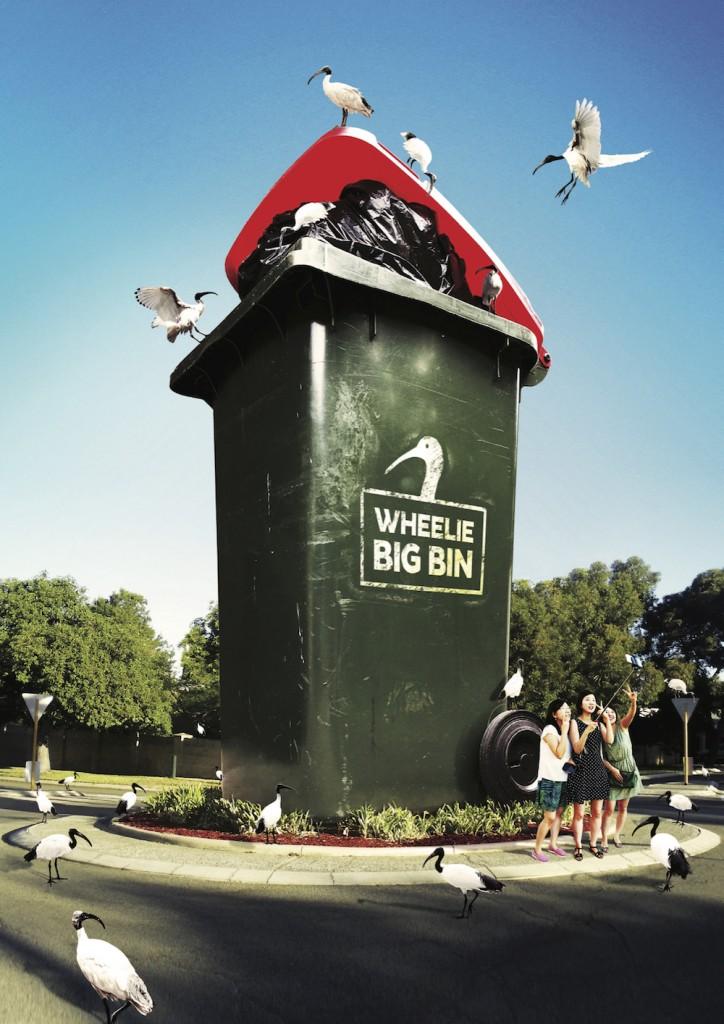 Ibis-The-Wheelie-Big-Bin-724x1024.jpg
