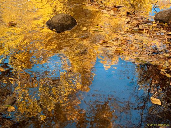Fall-Colors-in-Water-550x411.jpg