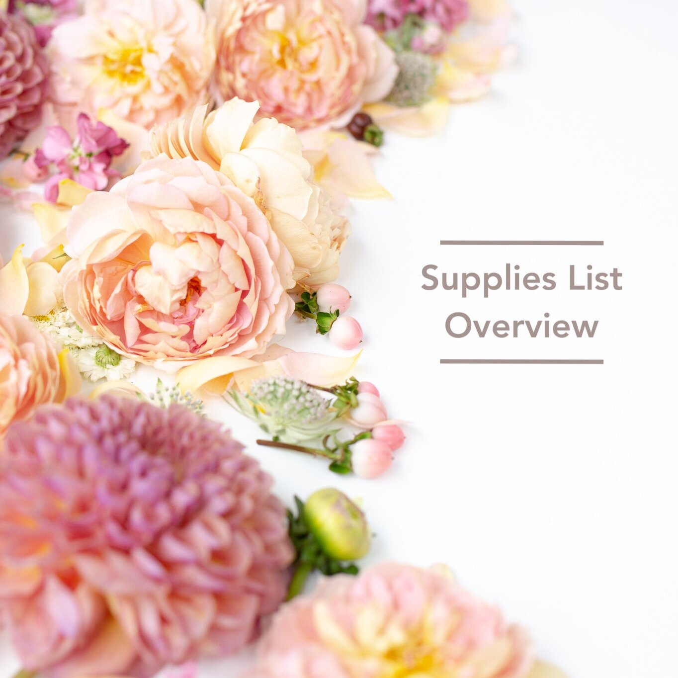 A customized supplies list will be created for all Bloom Culture Clients. Here is an overview of what you could need -