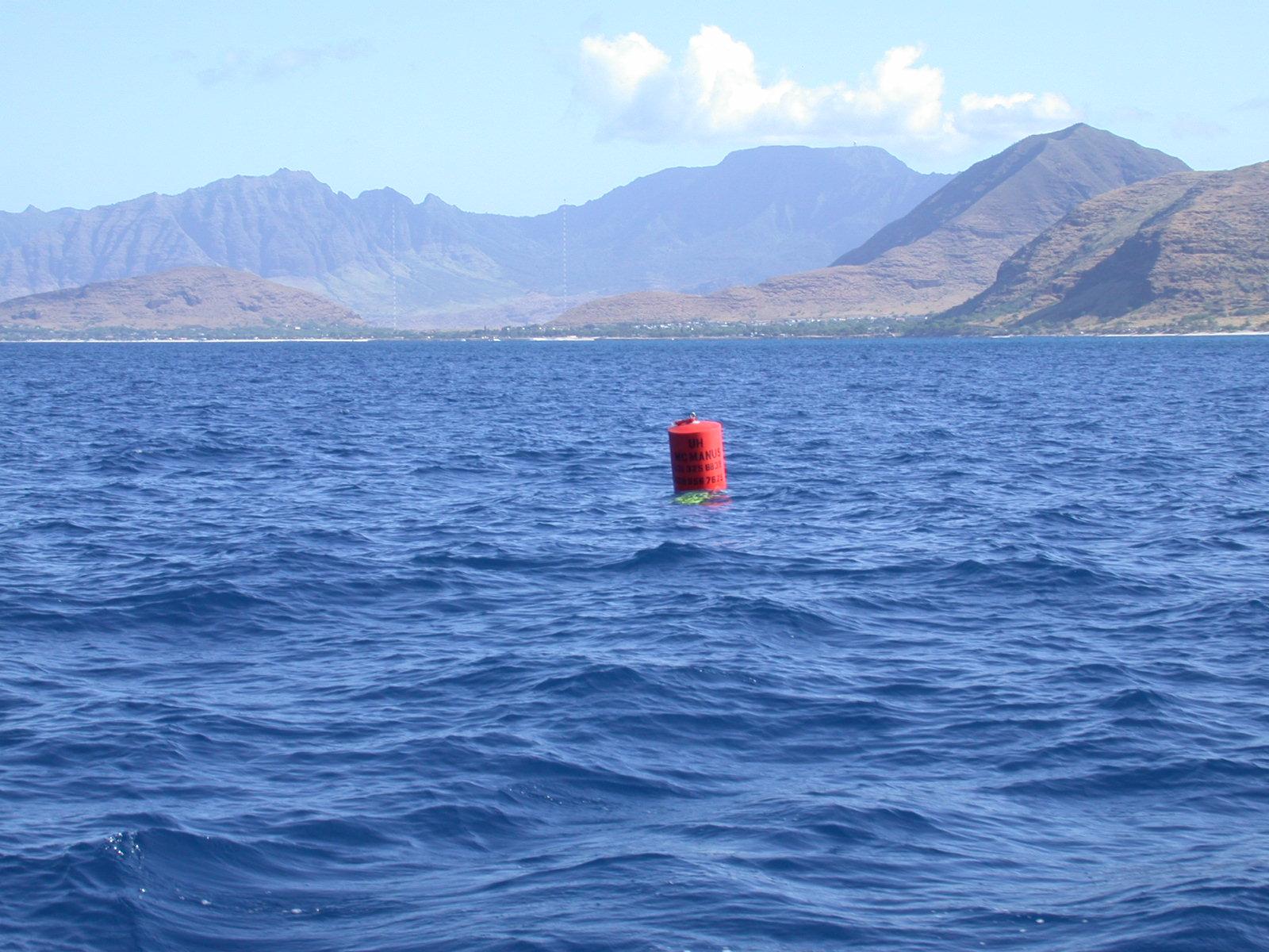 buoy2.JPG