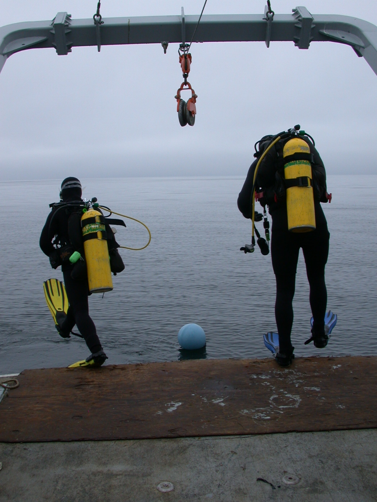 Diving on thin layers Monterey Bay