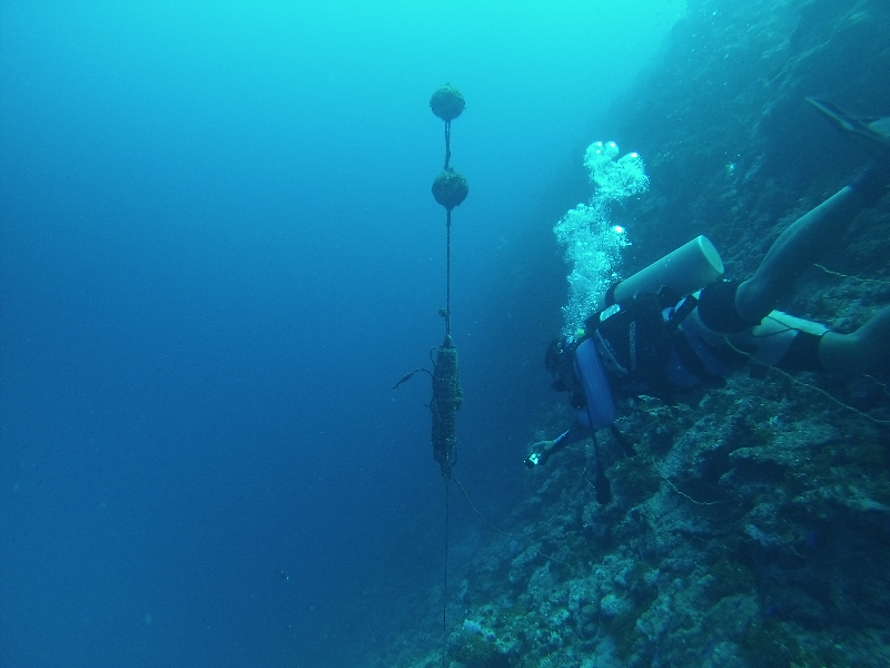 Water quality sensor deployment off the shore of Pohnpei