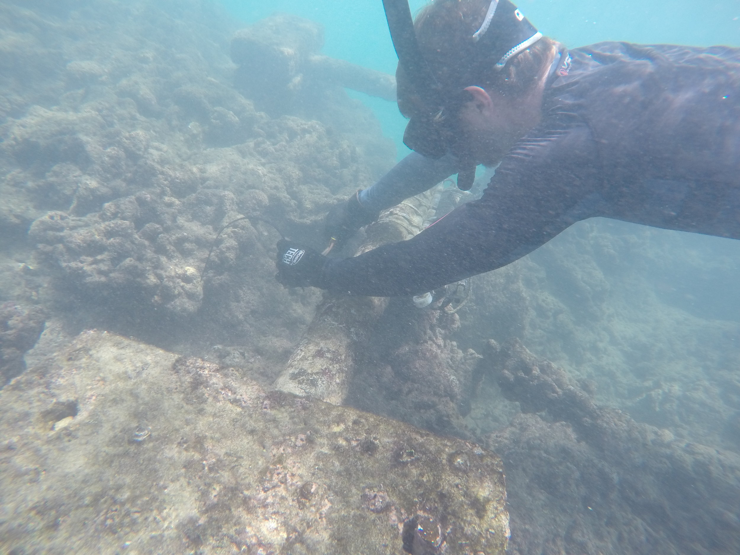 Near shore sensor group sensor deployment south shore, Oahu