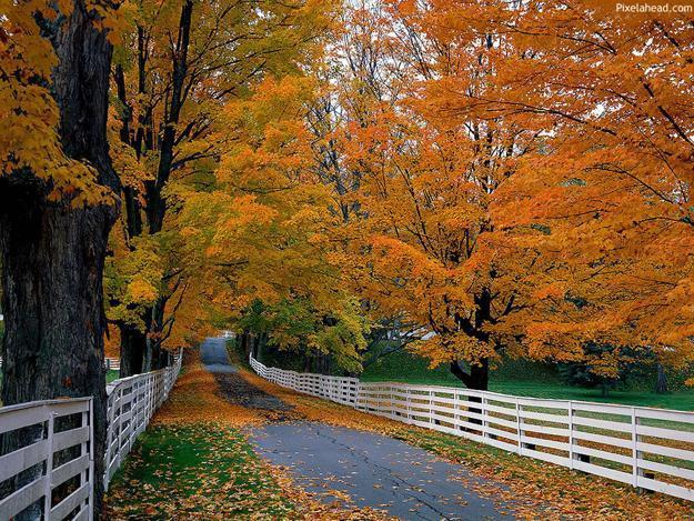 shared-driveway-berks-county.jpg