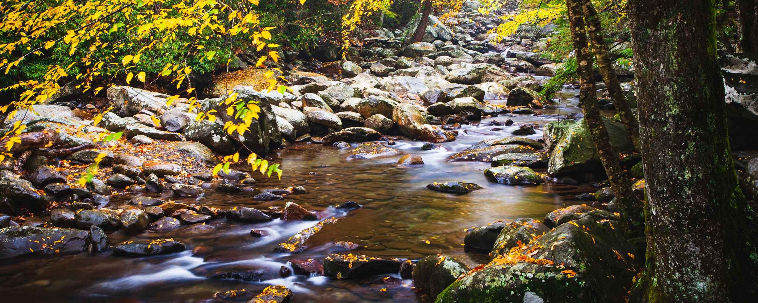 - Stream Restoration