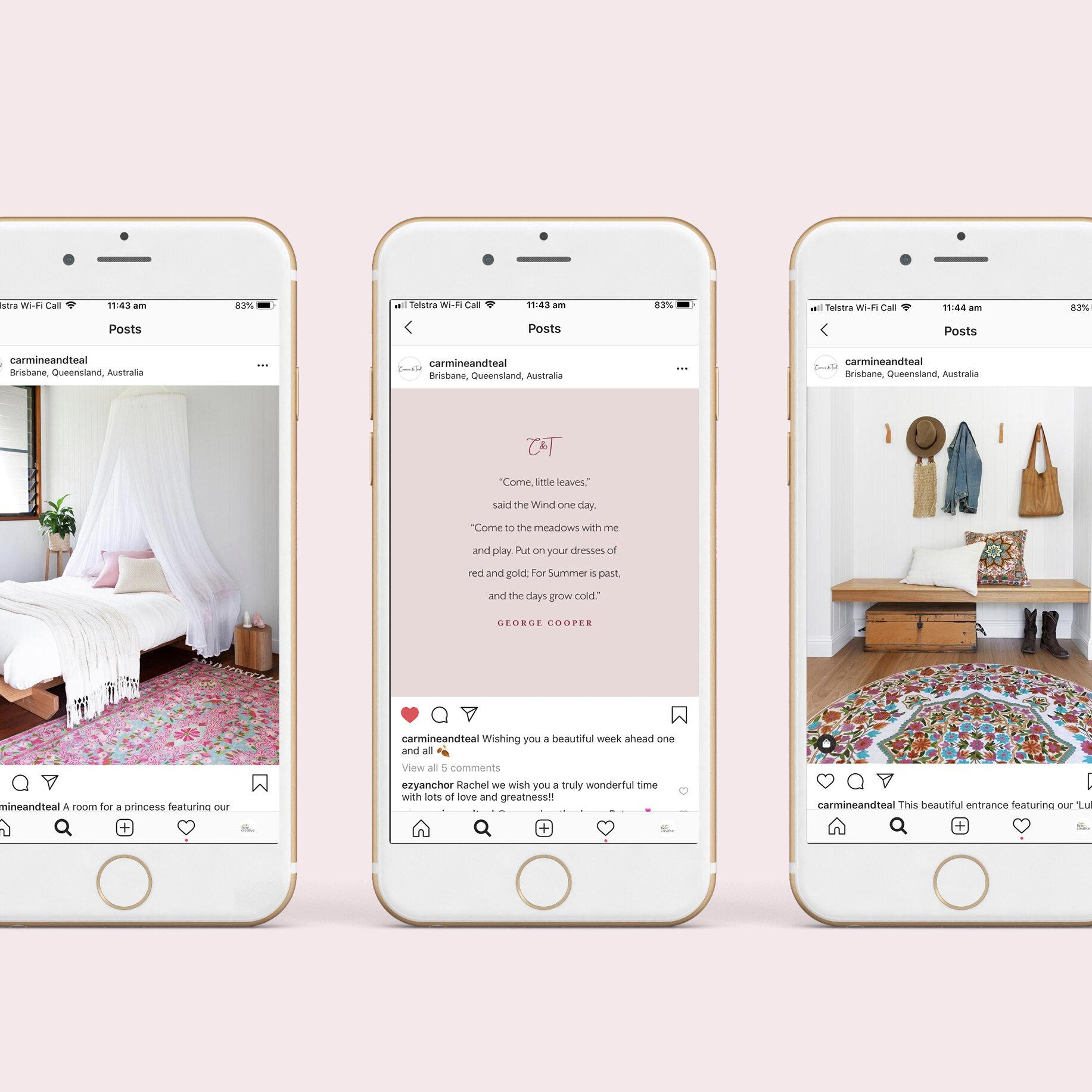 Carmine & Teal Social Media Design