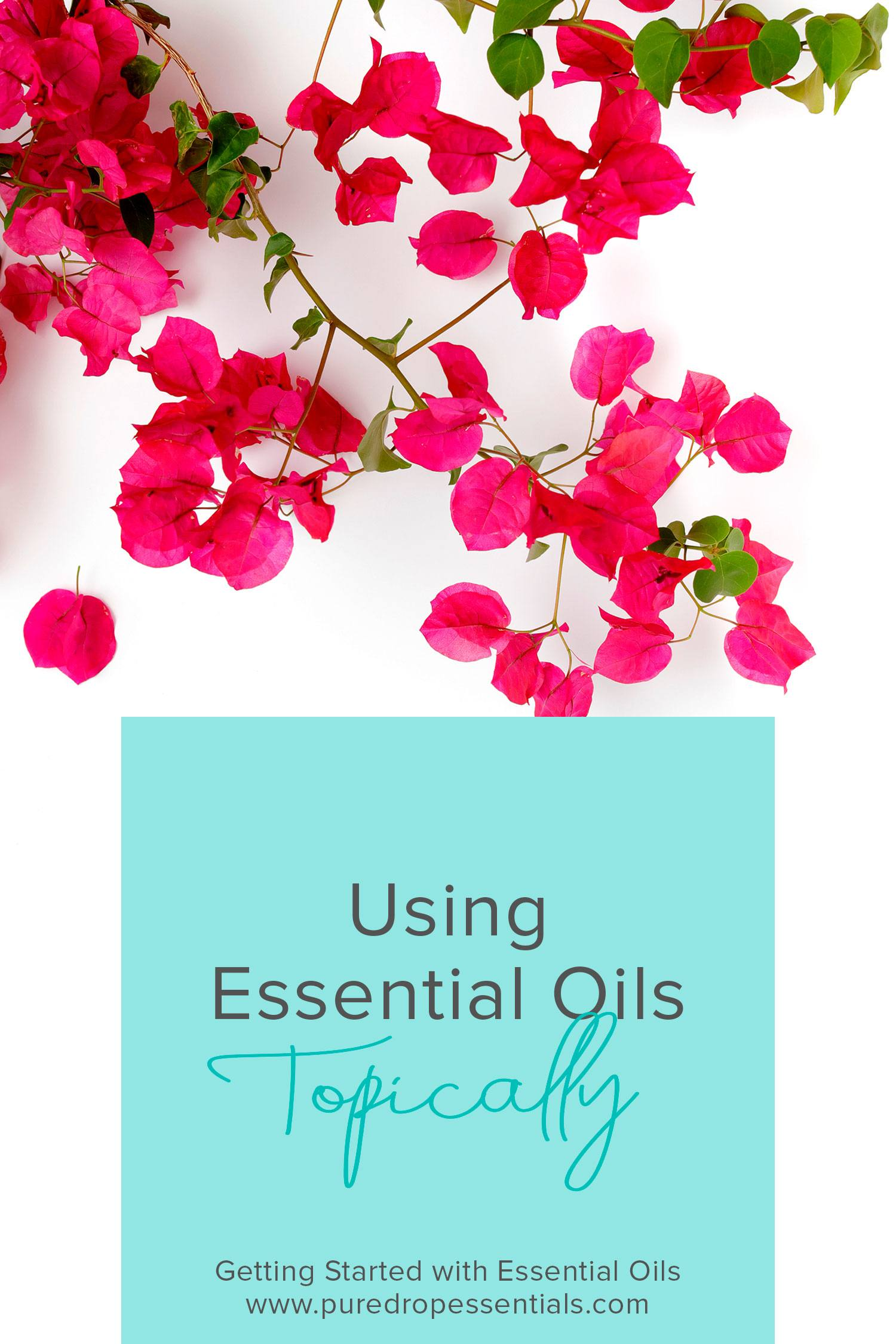 Applying essential oils to your skin can be a safe and effective way to experience the benefits of essential oils. This allows you to experience the aromatic benefits of the essential oils, along with having a targeted effect on the area it has been applied to. Click through to find out more about using essential oils topically to support your body ! www.puredropessentials.com