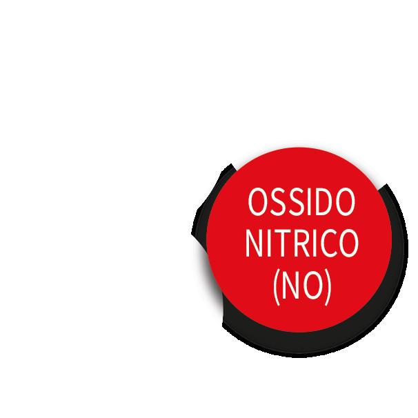 Ossido-Nitrico-cosa-fa-2.png