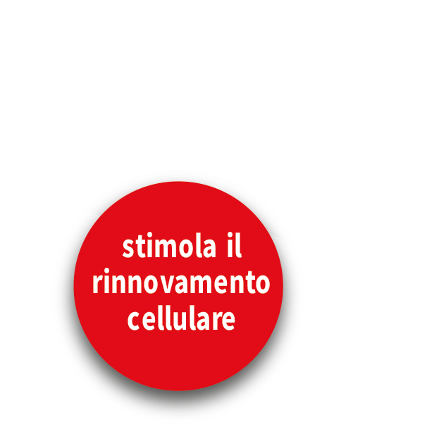 Ossido-Nitrico-cosa-fa-3.png